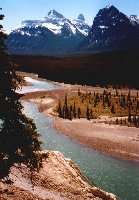 Athabasca River am Icefields Parkway