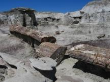 Sawmill in den Bisti Badlands