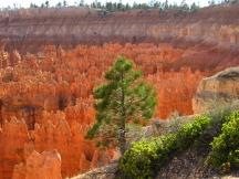 Inspiration Point, Bryce Canyon NP