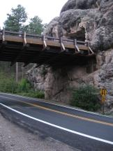 Tunnel an der Iron Mountain Road im Custer SP